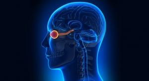 Vitamin K2 Status Linked to Brain and Eye Health