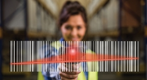 Serialization: Understanding the Challenges