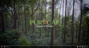 PurCaf