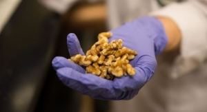 Consumption of Walnuts May Alter Gene Expression of Breast Cancers
