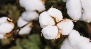Slideshow: Feminine Hygiene Goes Organic