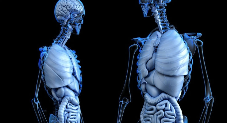 FDA Approves Device to Help Increase Access to More Lungs for Transplant