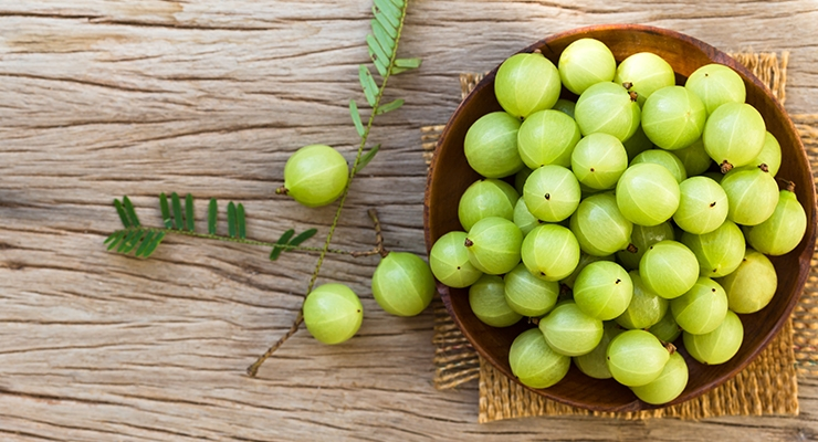 Study Demonstrates the Benefits of Phyllanthgus emblica Extract for Metabolic Syndrome