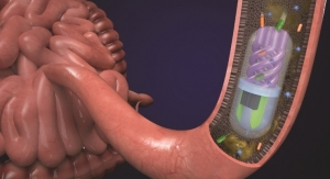 3D Printed Pill Samples Gut Microbiome
