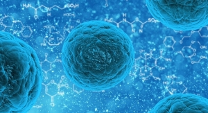 Self-Sterilizing Polymer Fights Drug-Resistant Pathogens