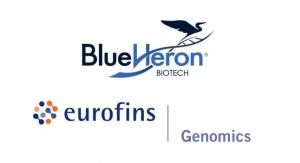 Eurofins Genomics US Expands Gene Synthesis Capabilities