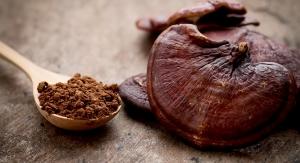 ConsumerLab Evaluates Reishi Mushroom Supplements