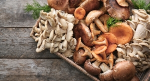 Regular Consumption of Mushrooms May Help Prevent Prostate Cancer