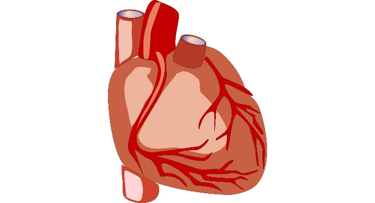 The TAVR Plot Thickens