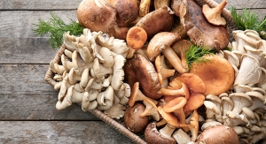 Mushrooms May Help Lower Prostate Cancer Risk