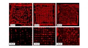 TU Wien Develops New High-Resolution 3D Bioprinting Process