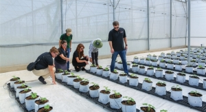 3M Launches New Sustainability Goal with Global Skills-Based Volunteer Program