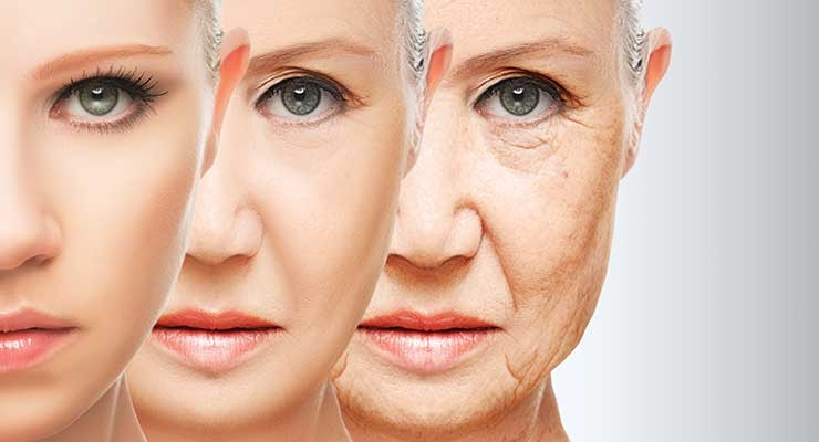 What Does Longevity Mean to Formulators?