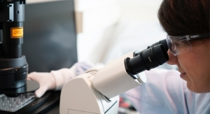 What Are the Benefits of an Automated High-Throughput Screening Process for Custom Cell Culture Media Development