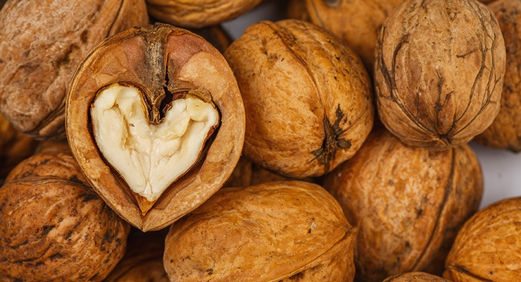 Walnuts Connected with Good Bacteria that Benefits Heart Health
