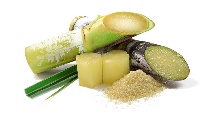 Sugar Cane Foaming Scrub