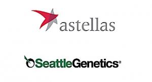 Astellas, Seattle Genetics PADCEV Gains Breakthrough Designation