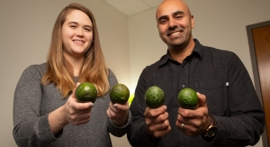 Daily Avocado Consumption Linked to Attention Improvements in Overweight, Obese Adults