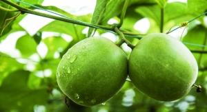MonkFiber, a Sweeter, Fiber-Packed Sugar Alternative