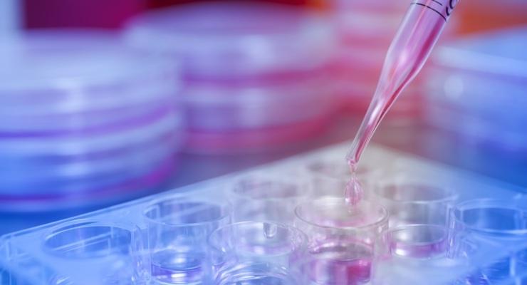 The Future of Pharma Beyond Blockbusters