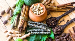 Botanical Research: Ayurvedic Herbs, THC:CBD Ratios & Polyphenols for Cognitive Function