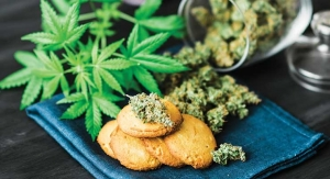 Cannabis Consumer Trends