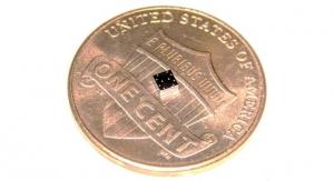 Lung-Heart Super Sensor on a Chip Tinier Than a Ladybug