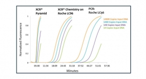 XCR Diagnostics Secures Patent for Infectious Disease ID Technology