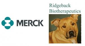 Merck and Ridgeback Bio Collaborate