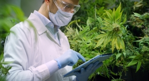 State Officials Criticize FDA Over Inaction on CBD Regulatory Pathway