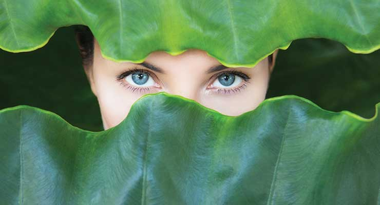Sustainability &  Natural Cosmetic Ingredients