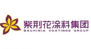 60. Bauhinia Coatings Group