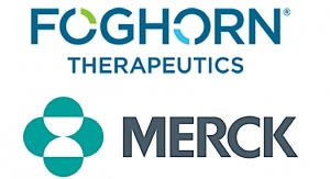 Merck Inks $425M Oncology Deal with Foghorn Therapeutics