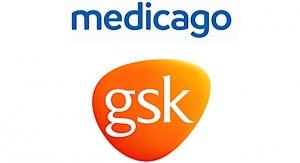 GSK, Medicago Enter COVID-19 Vax Tie-up