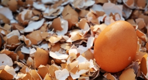 Eggshell Membrane and Fish Oil Combo Shown to Benefit Pain and Stiffness