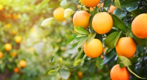 Vitamin C May Benefit Muscle Retention In Later Life