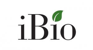 iBio Advances COVID-19 Vaccine Candidate