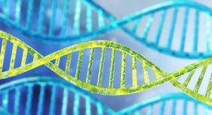 USDA Researchers: Carb-Fat Balance Crucial for Genetic Protection Against Metabolic Diseases