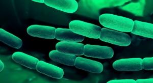 Kyowa Hakko Launches Immune Support Paraprobiotic Ingredient