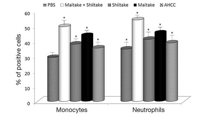 Mushrooms: Immune Support Workhorses