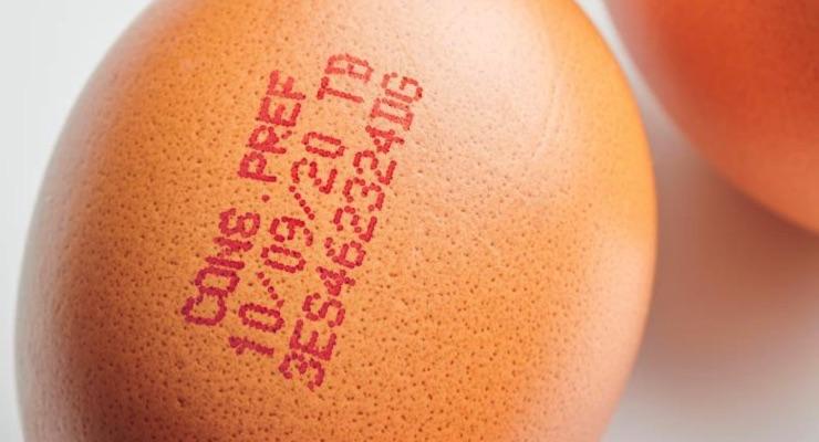 Inkjet printer cracks egg coding challenge