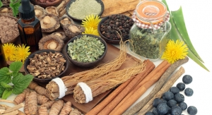 Medicinal Plant Research Experts Publish Review on History of Adaptogens
