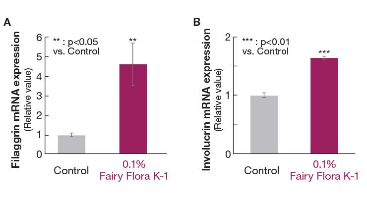 Rice-Derived Lactic Acid Bacteria Improves Skin Flora and Barrier