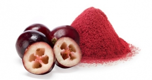 Study Indicates Cranberry Ingredient May Help Women with Overactive Bladder