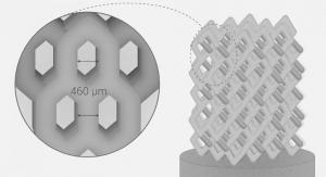 Russian Scientists Develop Novel Ceramic Bone Implant Manufacturing Method