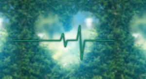 First Patients Treated With Pulsed Electric Field Cardiac Ablation System