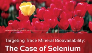 Targeting Trace Mineral Bioavailability: The Case of Selenium