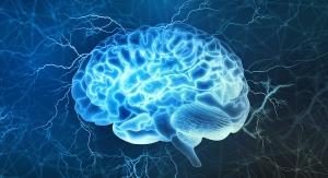 HP Ingredients Announces New Study on Brain Health Ingredient IQ200