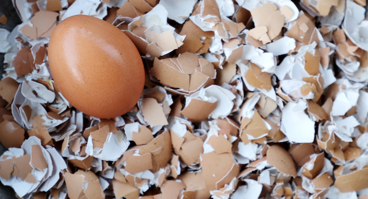 Eggshell Membrane Ingredient Receives Joint Health Claim in Canada