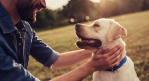 Orthopedic Solutions from Man's Best Friend